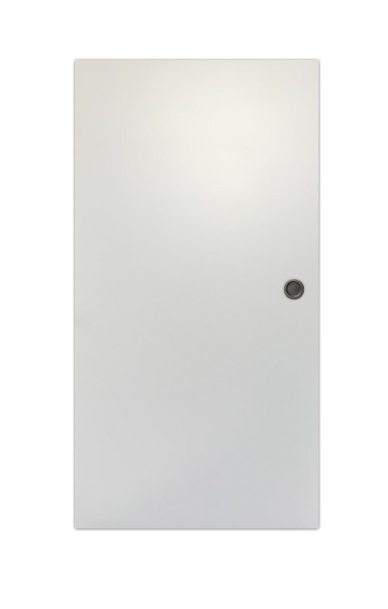 Eclisse Türblatt in RAL9003 mit mattem Muschelgriff